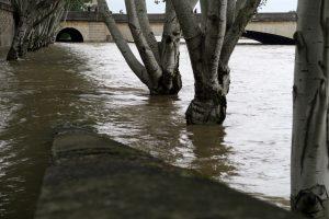 pont du Carrousel_9938b